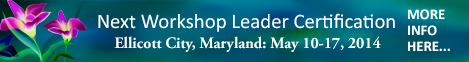 Heal Your Life Workshop Leader Training - Ellicott City, Maryland - May 2014